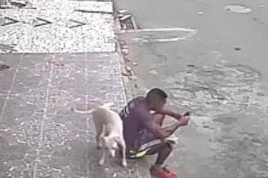 [별별영상] 남성에게 용변보고 도망간 개