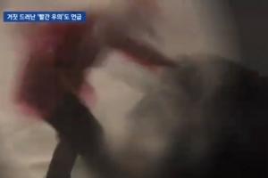 박근혜 청와대 '백남기 대응 문건'…'빨간 우의' 음모론도 등장(종합)