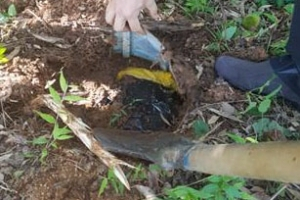 땅 속에 숨겨둔 현금다발에 들통…이용부 보성군수 뇌물비리