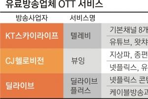 'TV OTT …유선·위성방송 가세  뜨거워진 '스트리밍'