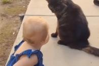 고양이와 함께 있던 아이가 보인 반응?
