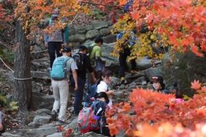 울긋불긋 꽃대궐… 가을빛 북한산