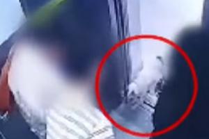 최시원 프렌치 불독 CCTV 공개