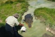 얕은 진흙탕도 호주에선 조심해야 하는 이유