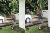 태풍 속 나무 지키려고 고군분투하는 여성