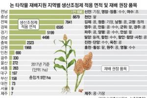 [단독] 논에 벼 대신 콩 심으면 보조금 200만원 받는다