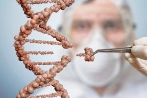 3세대 유전자 가위 '크리스퍼 특허 전쟁'