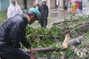 베트남에 태풍 '담레이' 강타…20명 사망·17명 실종