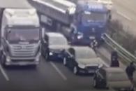 염소가 불러온 허망한 교통사고…4명 사망
