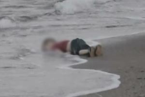 시리아 전쟁 다큐멘터리 '시리아의 비가', 헬렌 미렌 내레이션 참여