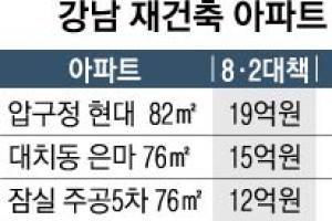 강남 재건축 '나홀로 강세'… 호가 2억까지 올라