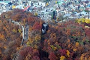 [서울포토] 추위에도 '예쁜 가을'