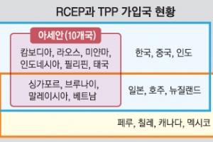 16개국 인구 30억명 'RCEP' 첫 정상회의