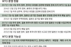 韓 '철강 반덤핑 분쟁' 승소… 美 보호무역 제동 걸리나