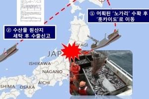 '수입금지' 日후쿠시마산 노가리 국내 유통한 업자들 덜미