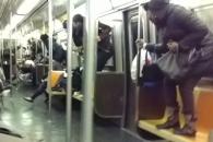 뉴욕 지하철 객차 안 쥐 출몰 소동