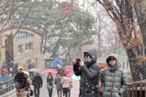 [서울포토] '겨울의 시작'… 서울에 내린 첫 눈 즐기는 관광객들