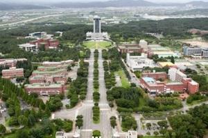 대구사이버대학교, 특성화 학과 자격증 직장인들에 인기