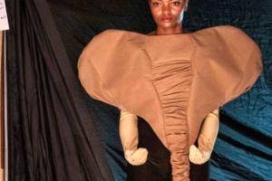 [포토] '코끼리를 입는다'