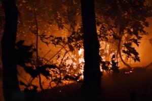 강원 양양 산불…큰 불길 잡았으나 잔불 진화에 어려움