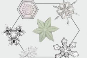 별·꽃 모양만 6000개 '눈 결정체' 기온·습도 따라 변신