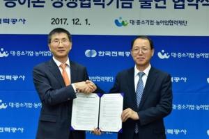 [안전이 미래다] 한국전력, 농어촌 태양광 발전 설비 50억 지원