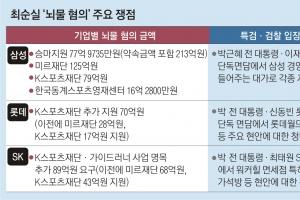 최순실 오늘 결심 공판… SK에 추가 요구 89억 '막판 쟁점'
