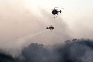 """부산 기장군 삼각산에 산불, 30% 진화…""""100㏊ 피해 추정, 인명피해는 없어"""""""