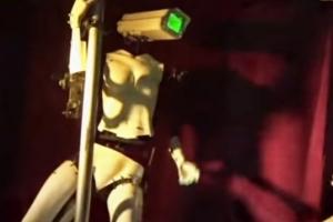사람처럼 요염하게 폴댄스 추는 쌍둥이 로봇 스트리퍼