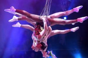 [포토] 아찔·짜릿한 퍼포먼스…국제 서커스 페스티벌