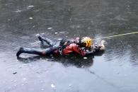 '살려줘요' 연못 얼음에 달라붙은 오리