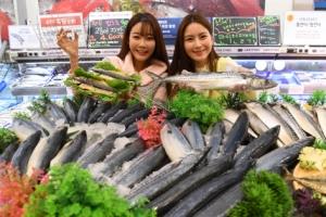 [서울포토] '등 푸른 생선 저렴하게 맛보세요'