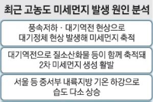 중국발 황사에 난방사용 폭증… 효과없는 미세먼지 비상 대책