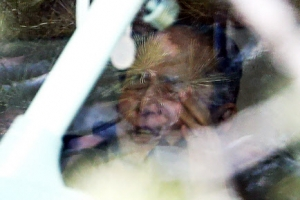 [포토] '압수수색에 심각한' 이상득 전 새누리당 의원
