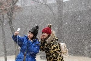 [서울포토] '눈 내리는 날, 찍어야지~'