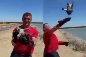 새끼고양이 호수에 던진 '일벌백계' 마땅한 철없는 남성