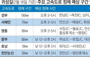"""""""설 연휴 귀성 15일 오후 6시 이후 덜 막혀요"""""""