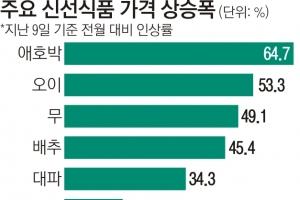 폭설ㆍ한파로  '설 차례상 물가 ' 들썩