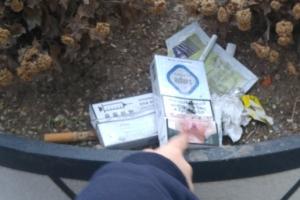 [서울포토] 너무하네…정부세종청사 버스정류장 화단 담배 쓰레기