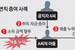 '금수저' 부동산 변칙 증여…수억 시세 차익에 수억 탈루까지