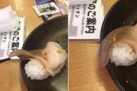 만약에 초밥이 살아 움직인다면??