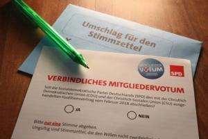"""""""강아지가 독일정부 선택하나""""…사민당 당원투표 허점 논란"""
