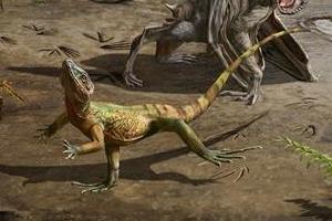 남해안서 세계에서 가장 오래된 도마뱀 발자국 발견