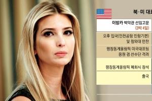 靑, 이방카 정상급 예우… 트럼프 대북 메시지에 촉각