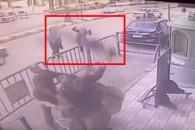 3층서 떨어진 5살 소년 맨손으로 구한 이집트 경찰