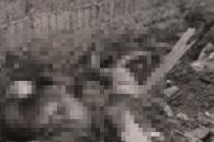일본군 조선인 위안부 학살 영상 첫 공개