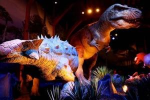 [유용하 기자의 사이언스 톡] 안킬로사우르스 화석은 왜 대부분 뒤집힌 모습일까