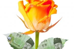 ELS, 다시 봄날… '年 5% 수익' 꽃 피워라