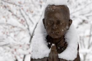 [포토] '이제 많이 내렸습니다,,,' 눈이 한가득