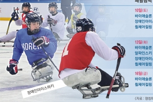 올림픽 감동 잇는 '불의 축제'… 겨울 스포츠 동화 팡파르